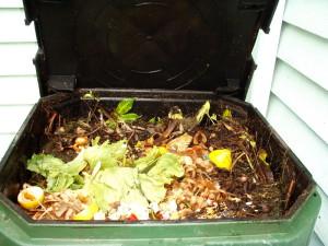 На фото - удобрение для растений из кожуры овощей, nasha-da4a.ru