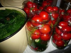 На фото - маринование помидор черри на зиму, img1.liveinternet.ru