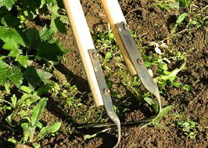 Фото подрезных лезвий для прополки картофеля от сорняков, rmnt.ru