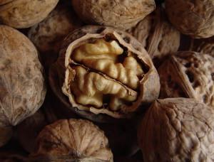 Фото выбора грецких орехов при покупке, sevastopol.all.biz