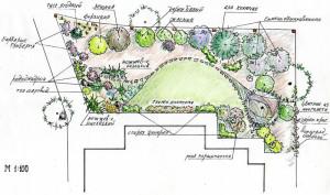 Фото схемы расположения растений для сада, abarkada.ru