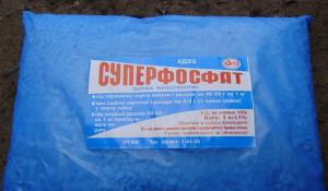 На фото - суперфосфат для подкормки смородины перед зимой, udec.ru