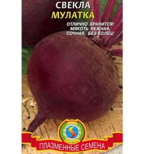 На фото - семена свеклы Мулатка, green-club.com.ua