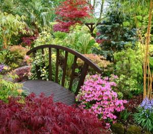 Как сажать кустарники на загородном участке? фото