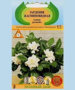 На фото - семена жасминовой гардении, himwest.ru