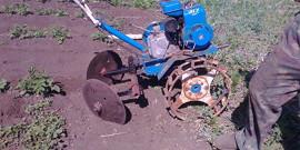 Прополка мотоблоком – как убрать сорняки и не повредить посадки?