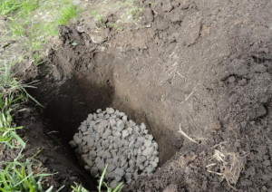 На фото - удобрение посадочной ямы для винограда, otzovik.com