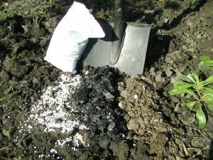 На фото - удобрение почвы, dom-sad-og.ru