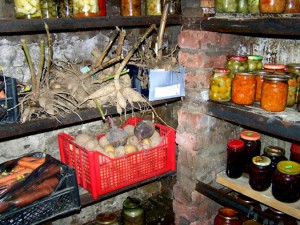 Фото хранилища под овощи в подвале дома, tasha-jardinier.livejournal.com