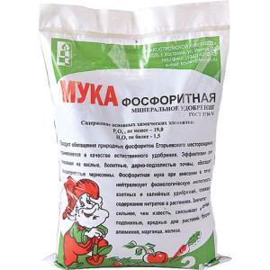 На фото - фосфоритная мука, ogorodbezzabot.ru