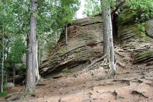 Фото серых лесных почв, kuban-moi-region.ru