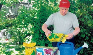 Фото препаратов для подкормки плодовых деревьев, plodovie.ru