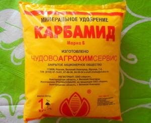 Фото карбамида для обработки клубники весной, irecommend.ru