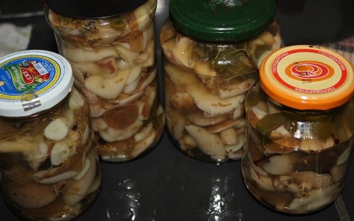 Консервация грибов маслят, шампиньонов - как сделать в домашних условиях + Видео