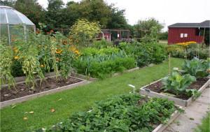 Чем луна может помочь огородникам?