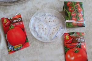 На фото - замачивание семян помидоров, yavderevne.ru