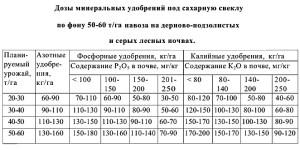Фото расчета внесения удобрений для сахарной свеклы, agro-archive.ru