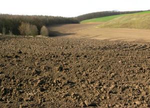 Фото хорошо взрыхленного грунта, konfetkina.blogspot.com