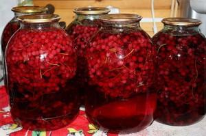 Фото компота из красной смородины, supersadovod.ru