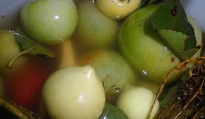 Квашенные зеленые помидоры на зиму – правила и рецепты готовки Видео