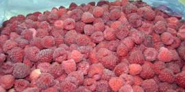 Как заморозить малину на зиму – свежие ягоды круглый год