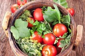 Фото засолки помидоров в бочке, cosmogon.ru