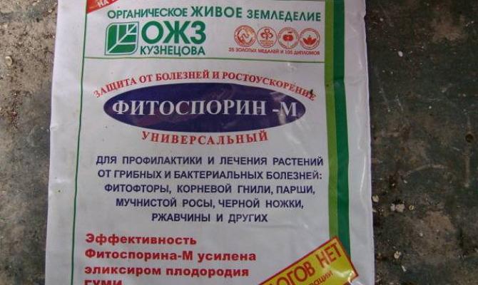 Фото Фитоспрорина-М