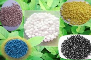 Фото минеральных удобрений для растений, youtube.com
