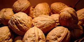 Как хранить грецкие орехи – с пользой круглый год