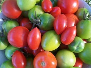 Зеленые помидоры в корейской кухне