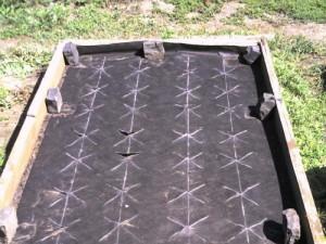 На фото - схема посадки клубники на агроволокне, disld.ru