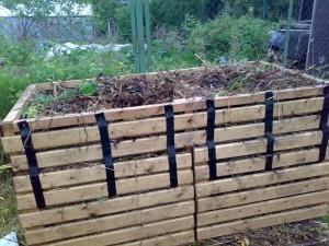 Фото компоста для выращивания картофеля, ogorod.club