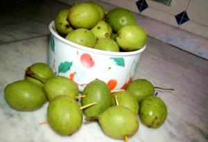 Фото зеленых грецких орехов, otvetin.ru