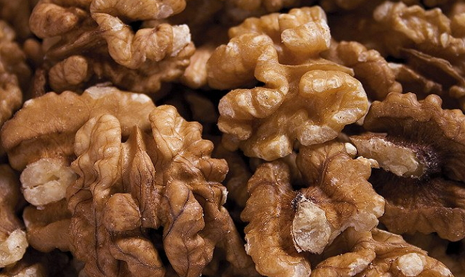 Фото просушивания грецкого ореха