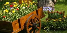 Клумбы из подручных материалов – оригинальные цветники в саду