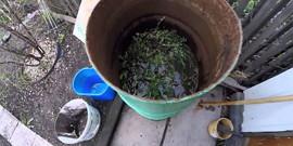 Удобрение из травы – изготавливаем подкормку огородным растениям