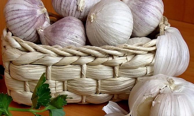 Какие полезные свойства есть у чеснока? фото