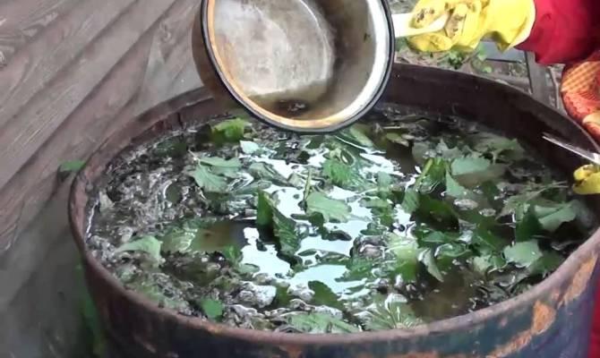 Фото приготовления жидкого травяного удобрения в бочке