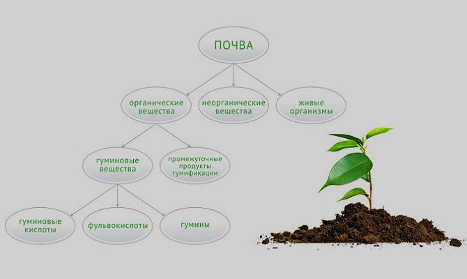 Что относится к гуминовым удобрениям?