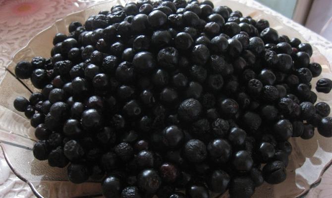 Рецепты заготовки свежей ягоды