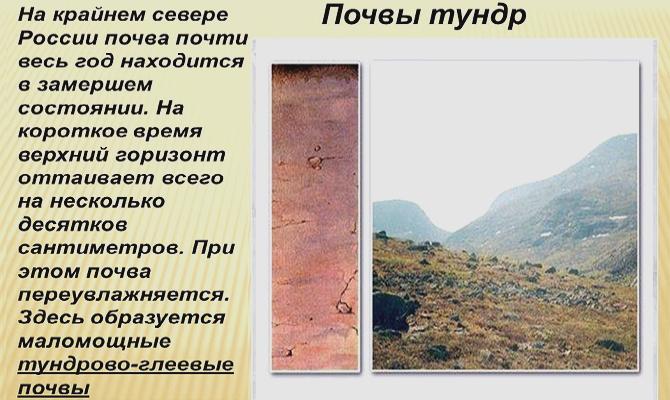 Морфология – разбираем почву по слоям фото