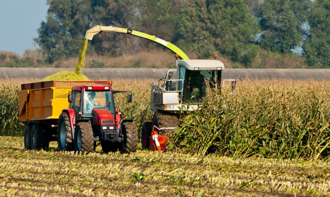 Сбор урожая зерноуборочным комбайном