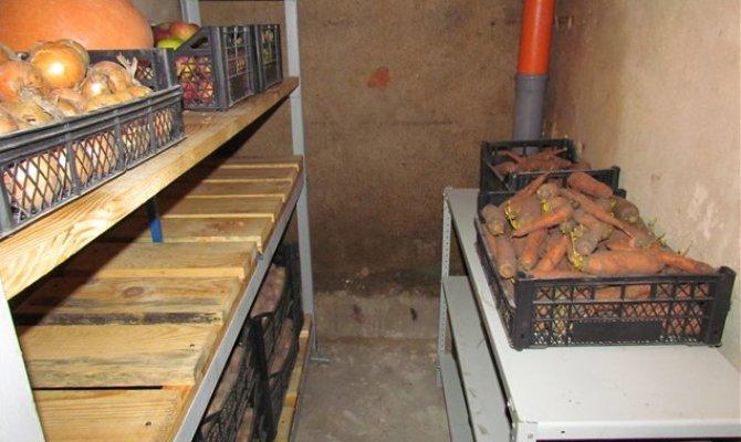 Овощи на полках в подвале