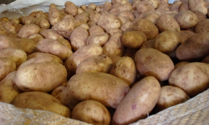 Хранение картофеля в тканевых мешках