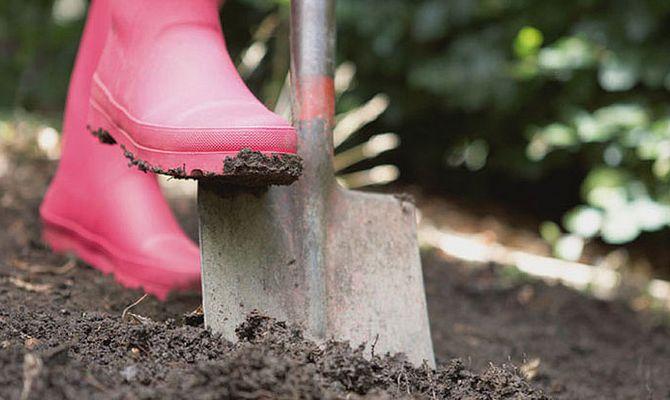 Перекапывание почвы перед высадкой