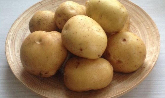 Клубни картофеля Каратоп