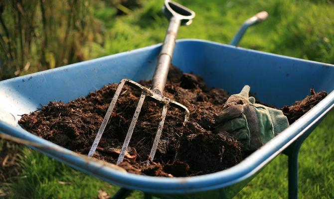 Органические удобрения для подкормки