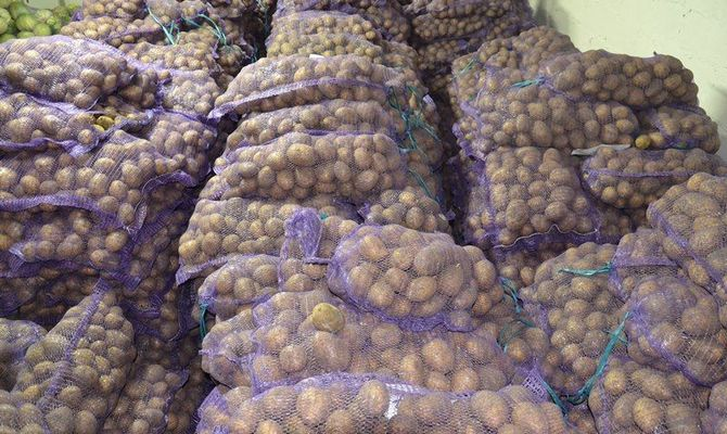 Хранение картофеля Винета