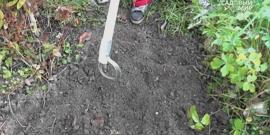 Полольник Стриж – рассматриваем инструмент для прополки участка