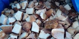 Как заморозить грибы на зиму – все тонкости заготовки охлаждением Видео